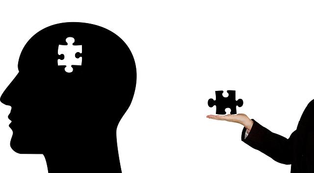 脳 photo
